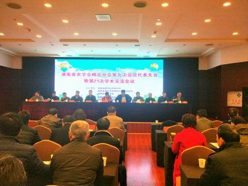 汇聚力量,共谋湖南棉花产业高质量发展