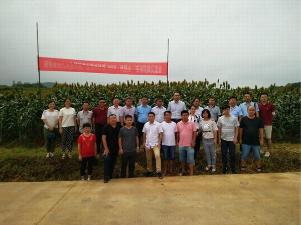 我所派员参加湖南省旱粮产业技术体系现场观摩交流会