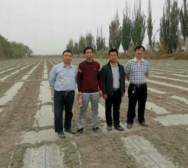 所党委委员、总农艺师李育强研究员一行赴新疆考察调研